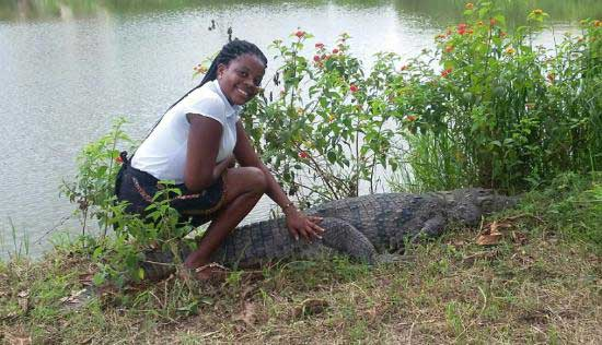 A tour guide plays with a crocodile at Ghana's Hans Cottage Botel. Image credit - TripAdvisor