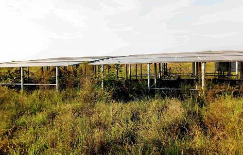 Solar panels provided for farmers in Tampion