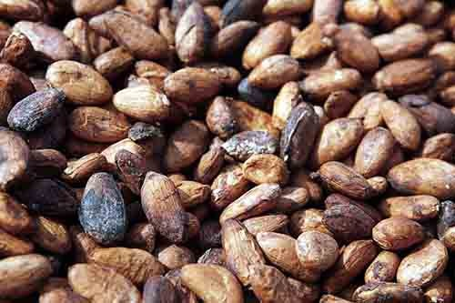 Cocoa prices soar as Ghana, Cote d'Ivoire threaten supply cut