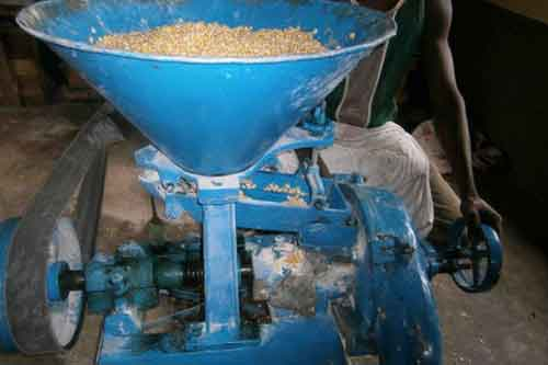Consumers of maize meals at risk of cancer