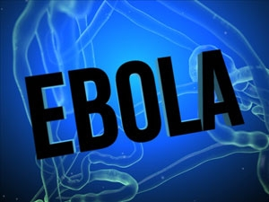 Ten Americans being flown home from Sierra Leone for Ebola concerns